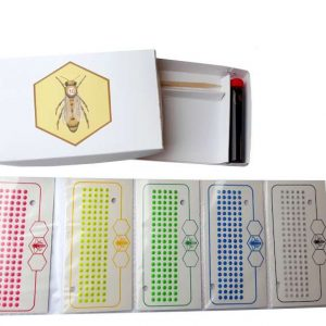 Queen Marking Kit 5 Years