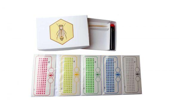 Queen Marking Kit 5 Years
