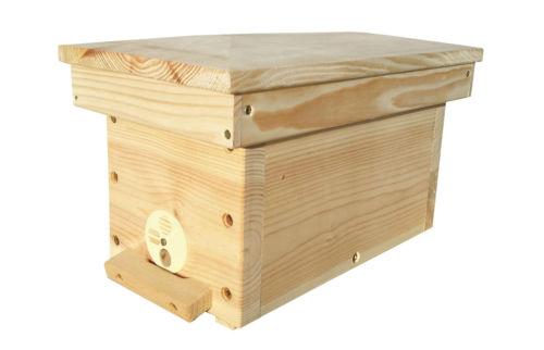 Mating Hive