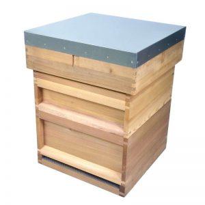 National hive-800